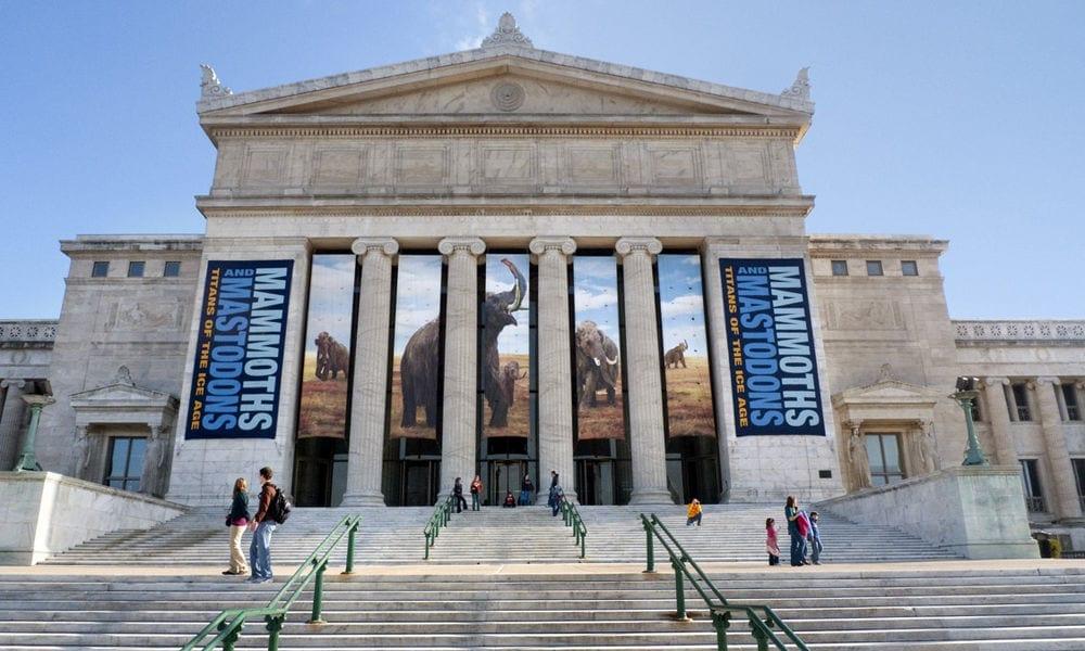 free museum